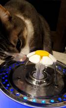 We liked the product very much our cat loved it. <2en> the product looks like in the image
