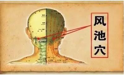 中医都有那些穴位可以对应那些疾病起到治疗的方法-养生法典