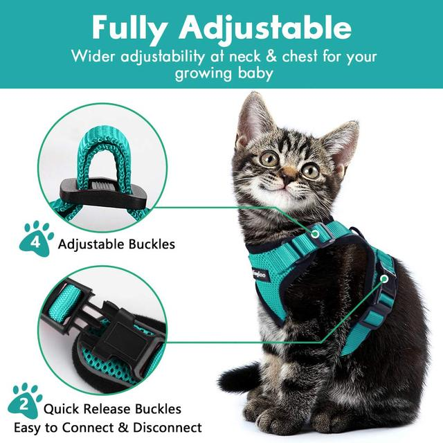 Escape Proof Cat Vest Harness and Car Seat Belt Adapter Adjustable Reflective Harness Soft Mesh Vest Harness for Kitten Puppy 4