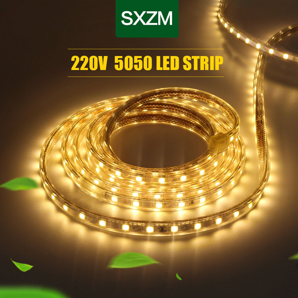 Ud92aade218fe42cb89c91dc82bd221e5C Waterproof SMD 5050 led tape AC220V flexible led strip 60 leds/Meter outdoor garden lighting with EU plug светодиодная лента