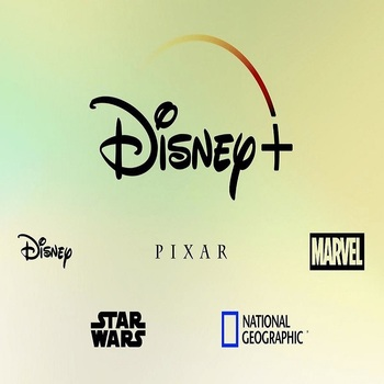 12 months disney plus abonnement disney+ account work on PC IOS Android Tablet PC 1 screen private