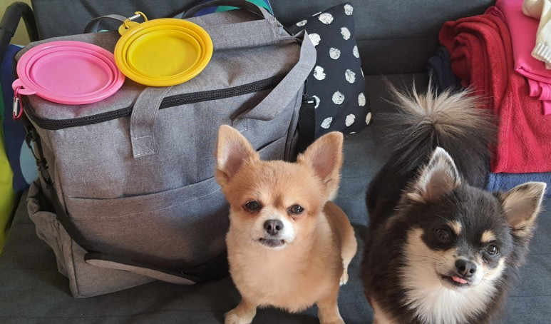 Dog Food Storage Bag   Dog Travel Bag With Food Bag and Bowl photo review