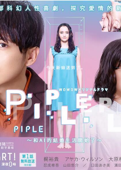 PIPLE:和AI的结婚生活开始了