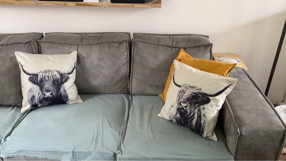 Highland Cow Cushion Cover photo review