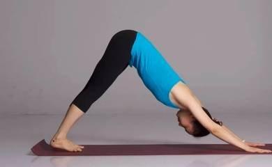 几种基本健身运动的标准动作方式-养生法典