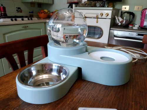 Dog Perfect Bubble Bowl - Automatic Water Drinking photo review