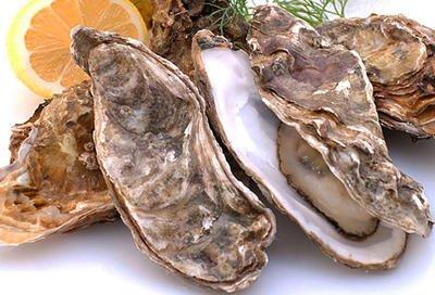 生蚝与牡蛎是同一种生物吗有哪些区别-养生法典