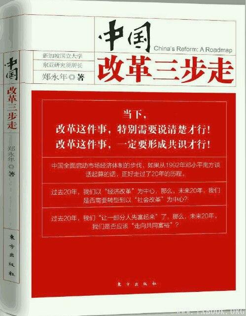 《中国改革三步走 》封面图片