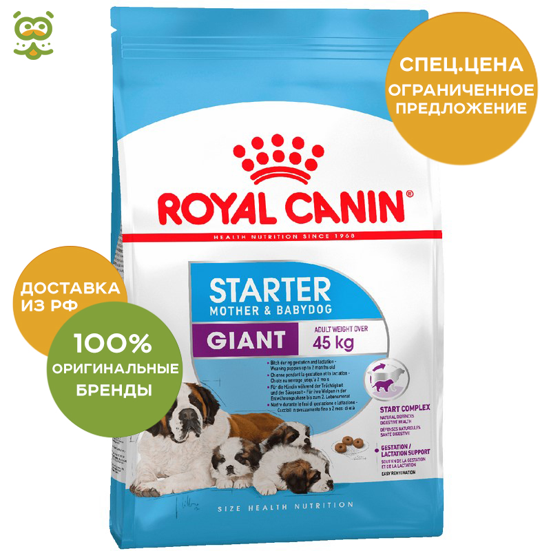 Puppy Food Royal Canin Giant Starter, 4 kg giant defy 4 compact 2014