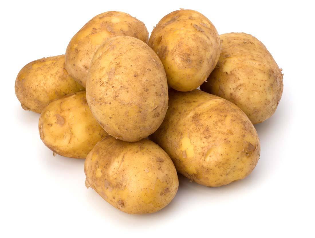 土豆服务器