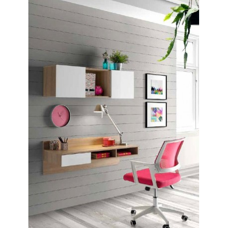 Desk Furniture Hung And Shelf With Doors Optional