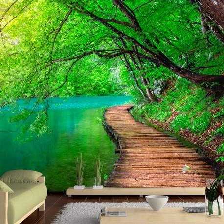 Papier peint Photo-paix verte