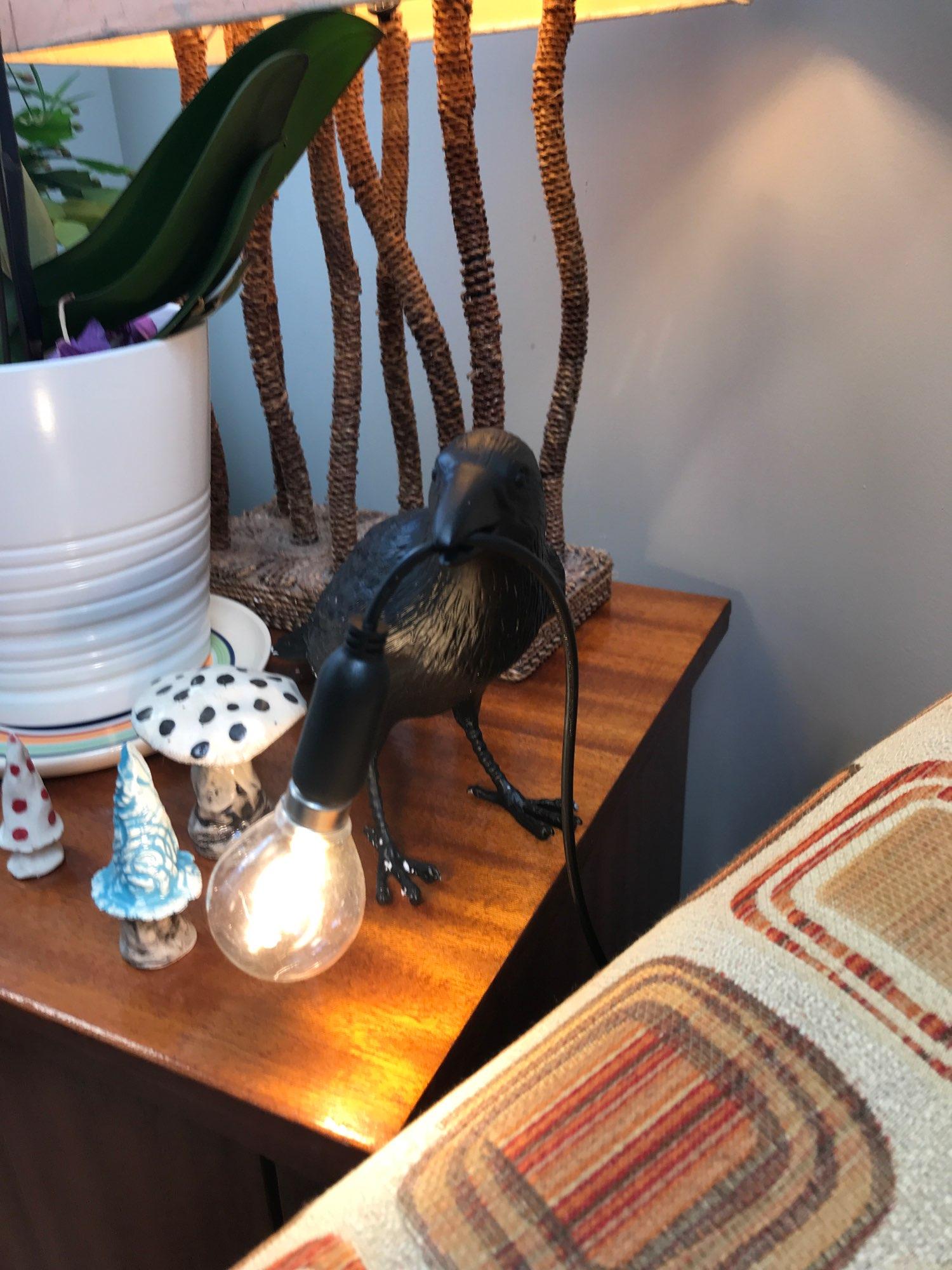 Raven Light - luxxllyhome photo review