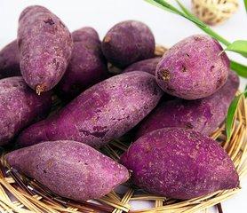 紫薯的热量高不高 吃紫薯容易长胖吗-养生法典