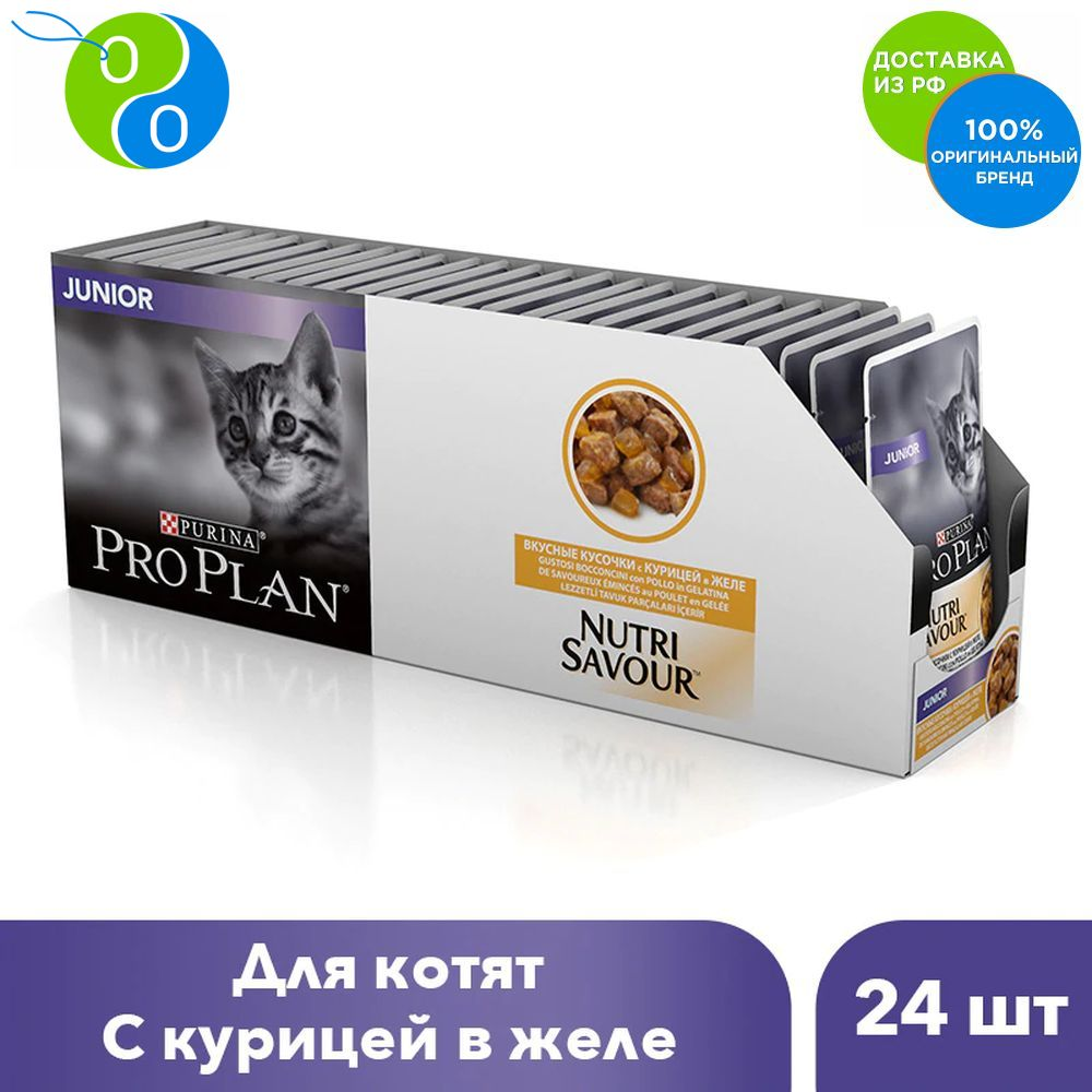 Set wet food Pro Plan Nutri Savour for kittens aged from 6 weeks to 1 year with chicken in jelly, Spider, 85g x 24 pcs.,Pro Plan, Pro Plan Veterinary Diets, Purina, Pyrina, Adult, Adult cats Adult dogs for healthy deve pro plan delicate adult canned promo 4 1 chicken turkey 5 85g