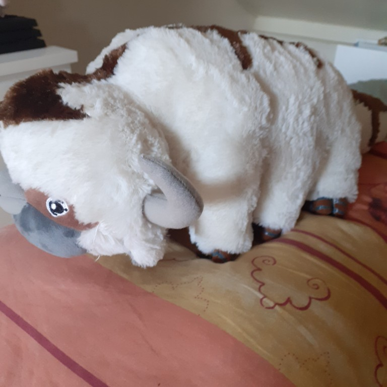 The Last Airbender Appa Avatar photo review