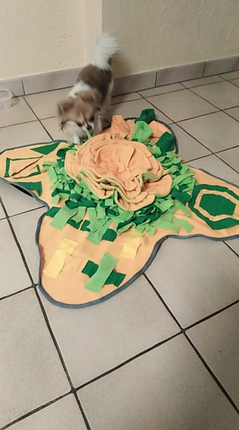 Snuffle Pad for Dogs | Puppy Snuffle Mat | Snuffle Mat photo review