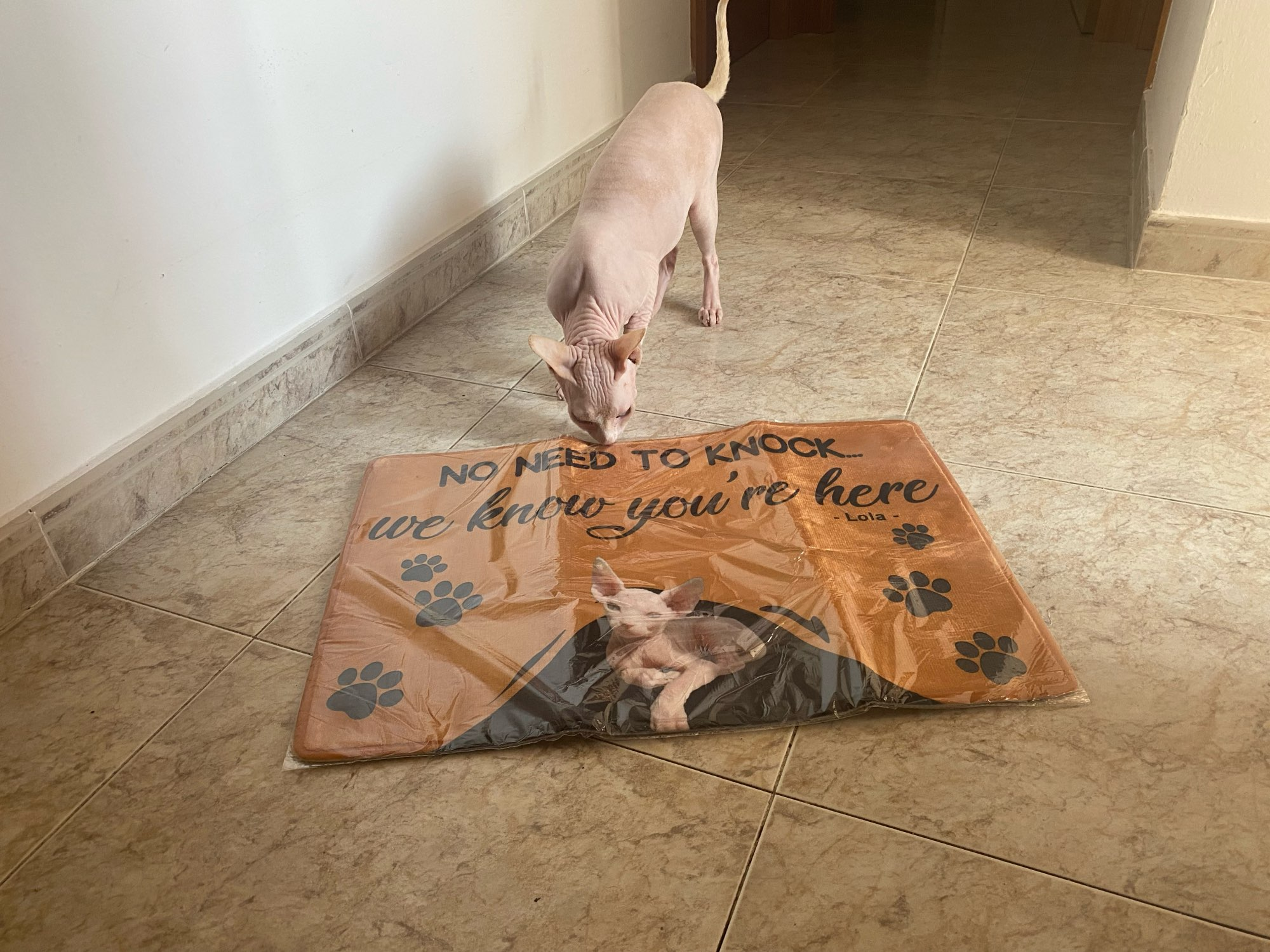 Custom Pet Involved Doormat With Your Pet's Photo photo review