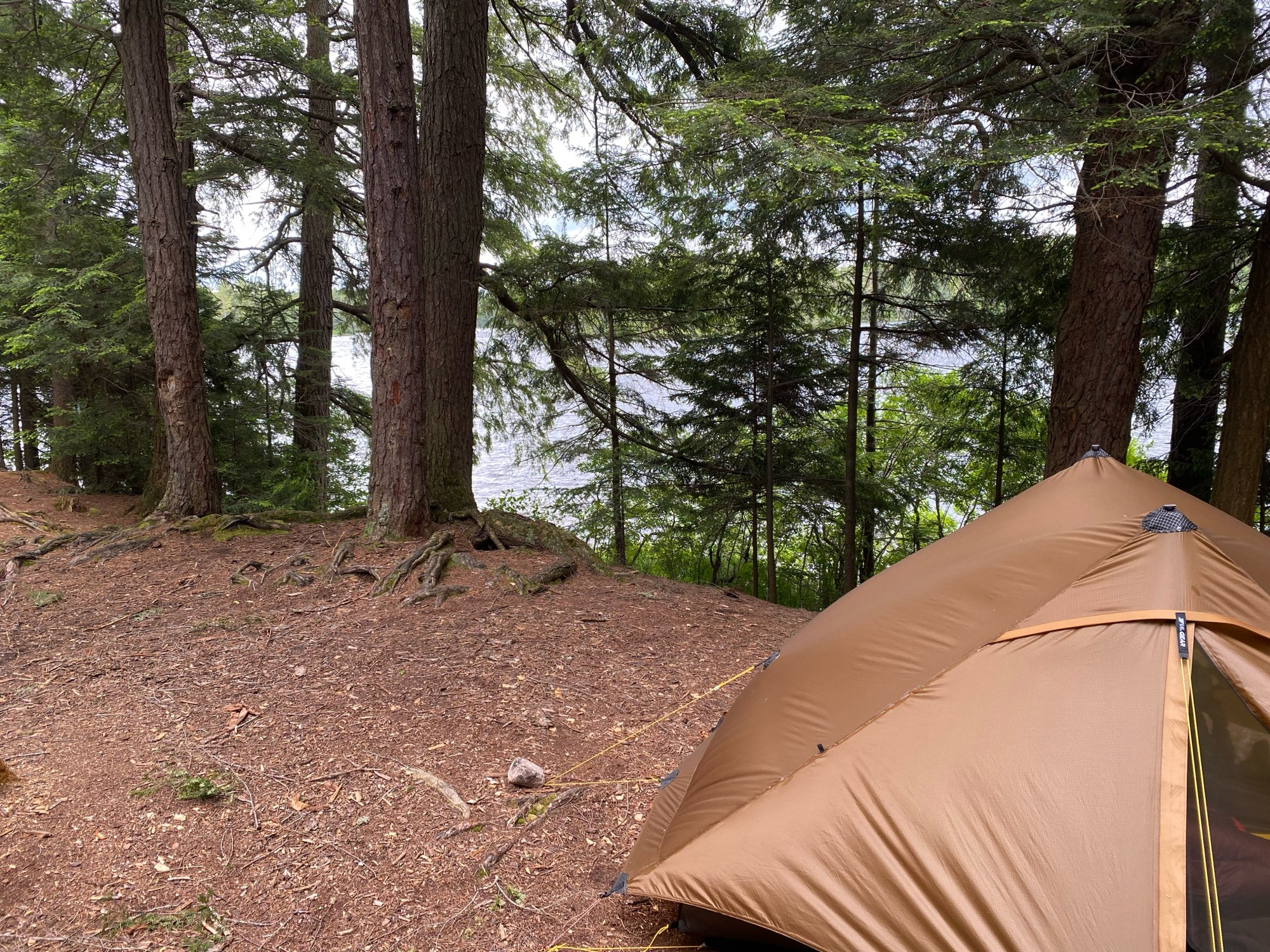 3F Lanshan 2 Pro Just 915 Grams 2 Side 20D Silnylon LightWeight 2 Person No-See-Um 3 And 4 Season Backpacking Camping Tent