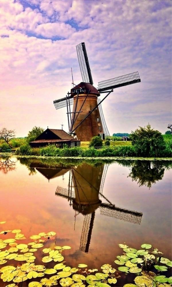 《荷兰》封面图片