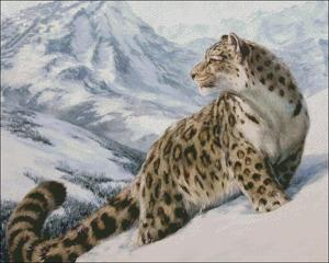 Image 2 - Leopard in the Snow   Counted Cross Stitch Kits   DIY Handmade Needlework for Embroidery 14 ct Cross Stitch Sets DMC Color