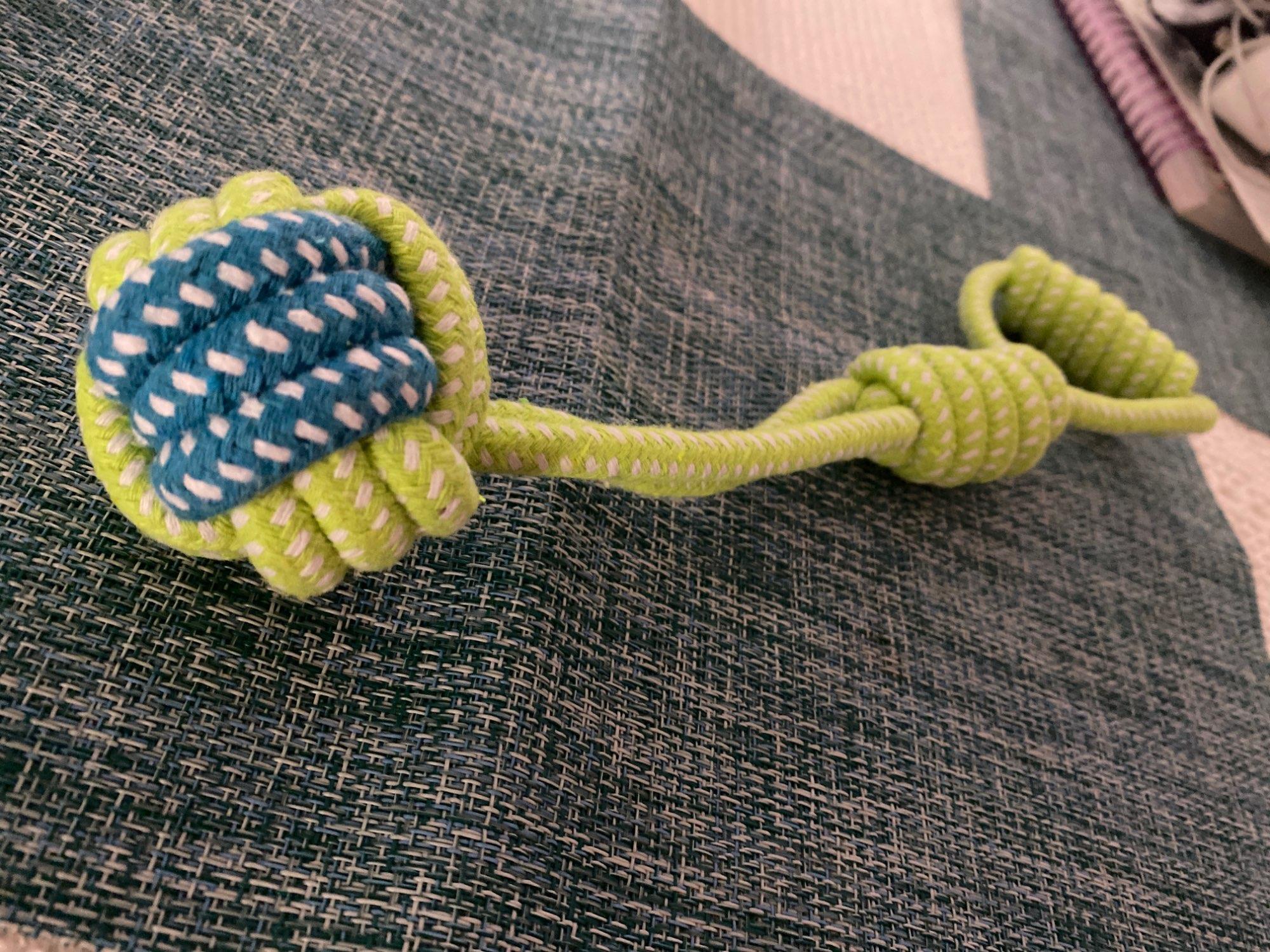 Giocattolo corda cane