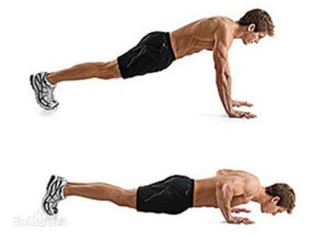 俯卧撑锻炼出来男人特有性感的胸肌-养生法典