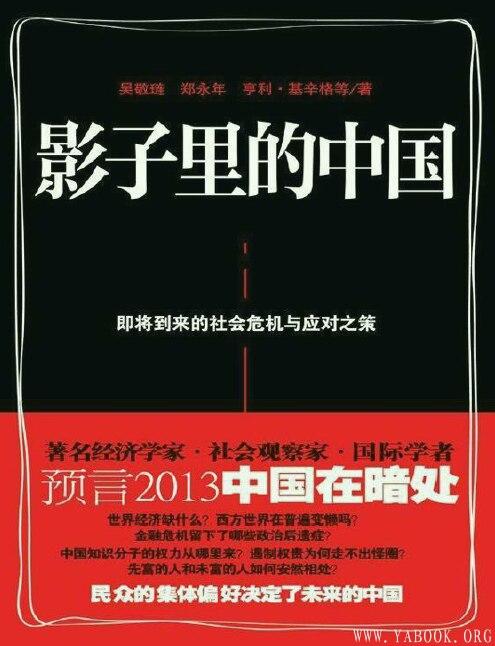 《影子里的中国:即将到来的社会危机与应对之策》封面图片