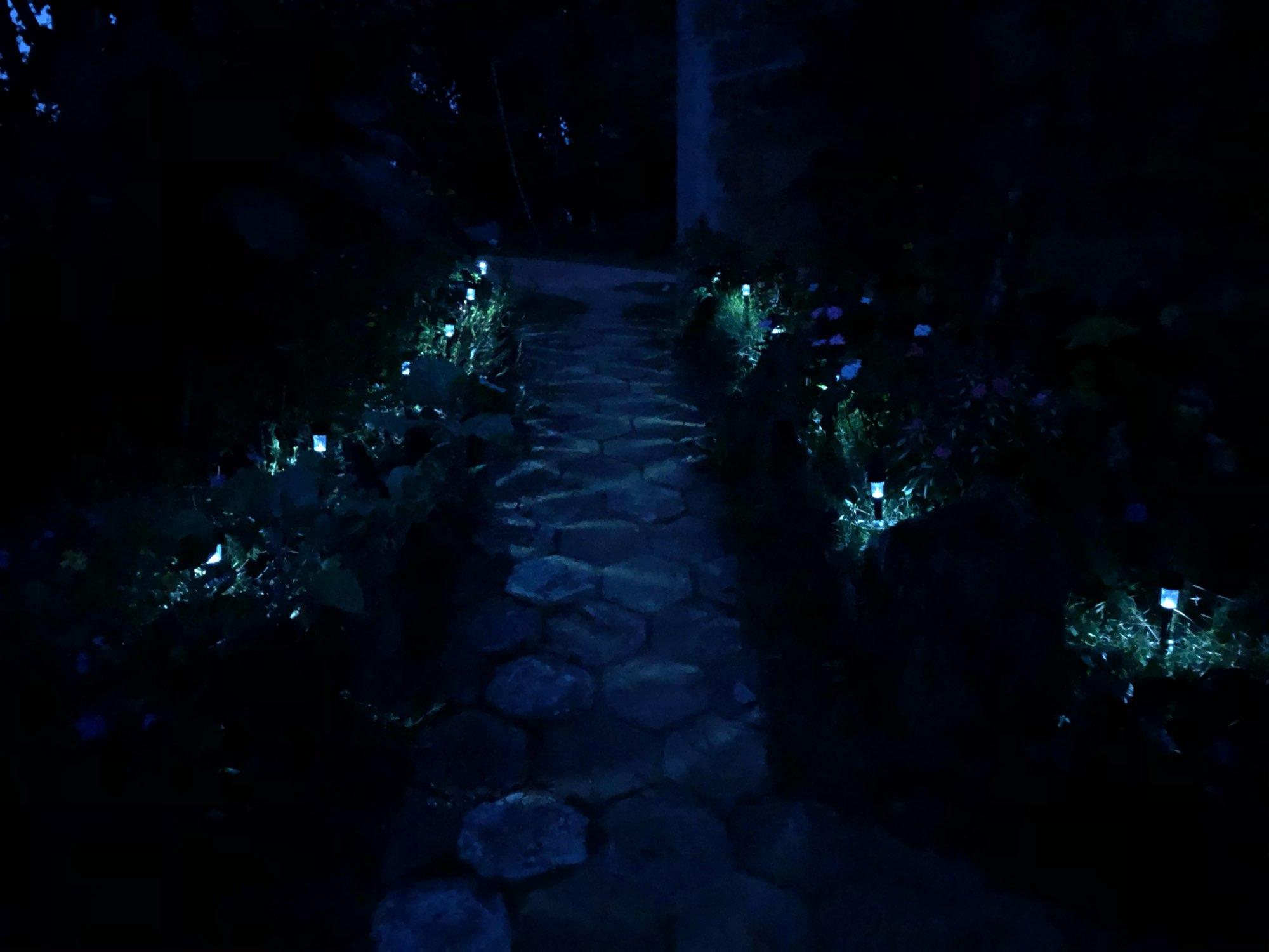 LED Solar Garden Lights Outdoor photo review