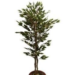 Искусственное arbre Фикус