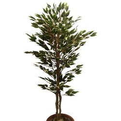 Artificial Tree Ficus variegated