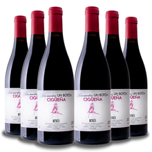 Ciguena Mencia 2018 6bot x 0,75 cl., Red Wine from Bierzo, Red wine 6 months in oak. Wine from Spain