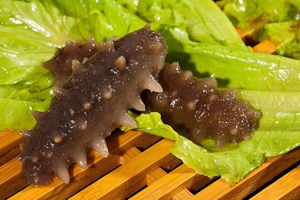 吃海参有哪些好处呢-养生法典
