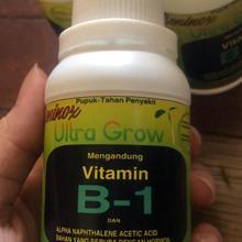 FERTILIZER Vitamin B1 for All Plants Beninox 100 ml