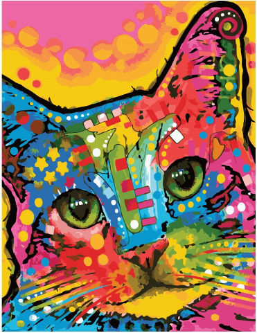 Picture By Numbers GX 34580 Multi-colored Cat 40*50