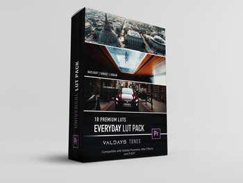 Everyday LUT Pack PROFESSIONAL CINEMATIC LUTs PACK