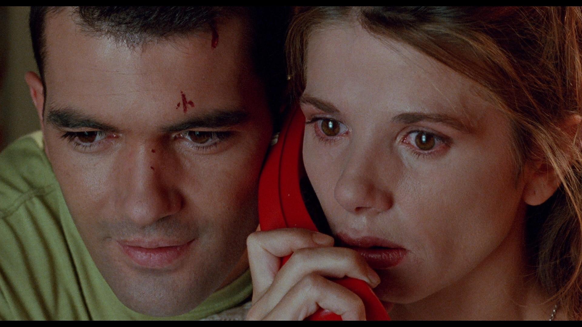《捆着我,绑着我 (1989)》