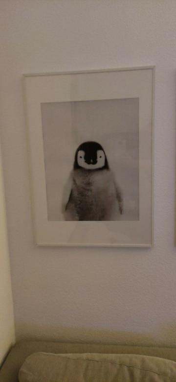 Cute Print Nursery Wall Art Baby Animal Prints photo review