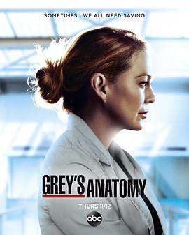实习医生格蕾第十七季的海报