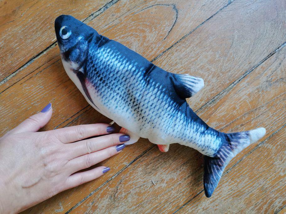 Realistyczna Tańcząca Ryba DISCO FISH photo review