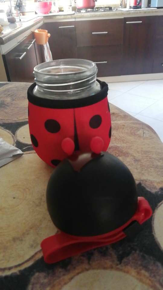 300ml Cartoon Bee Ladybug Water Bottle Glass Children Portabl Drink Kettle Gift With Protective Cover High temperature resistanc|Water Bottles|   - AliExpress