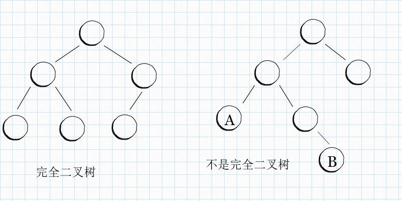 p001703_Complete-Tree