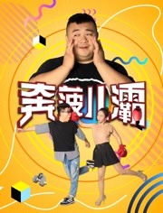 煮妇神探DVD版