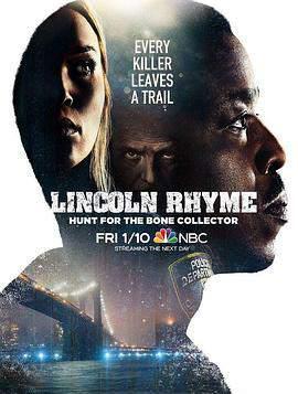 神探林肯的海报