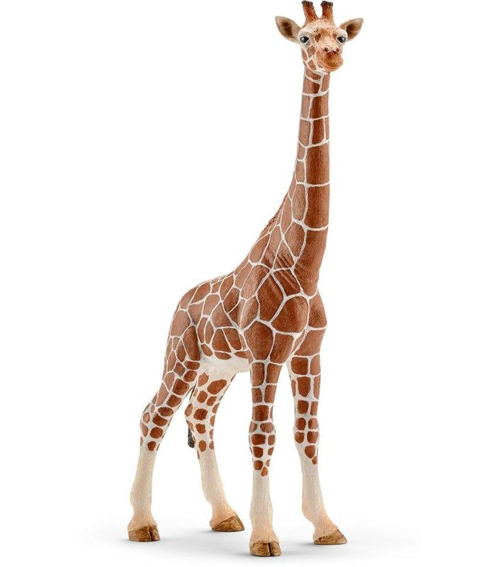 Giraffe Female Toy Store Articles Created Handbook