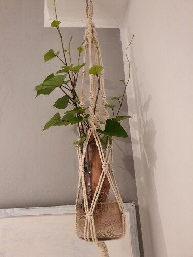 -- Planta-moderno Planta-moderno Projetos