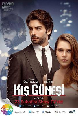 冬日暖阳/Kis Günesi的海报