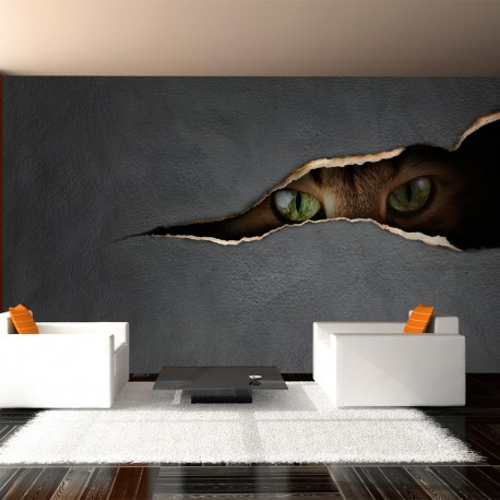 Photo Wallpaper-look Cat