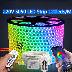 Double Row 220V RGB LED Strip +IR 24key Bluetooth Control 120LEDs/M 5050 Light Tape IP67 Waterproof Outdoor decoration lamp