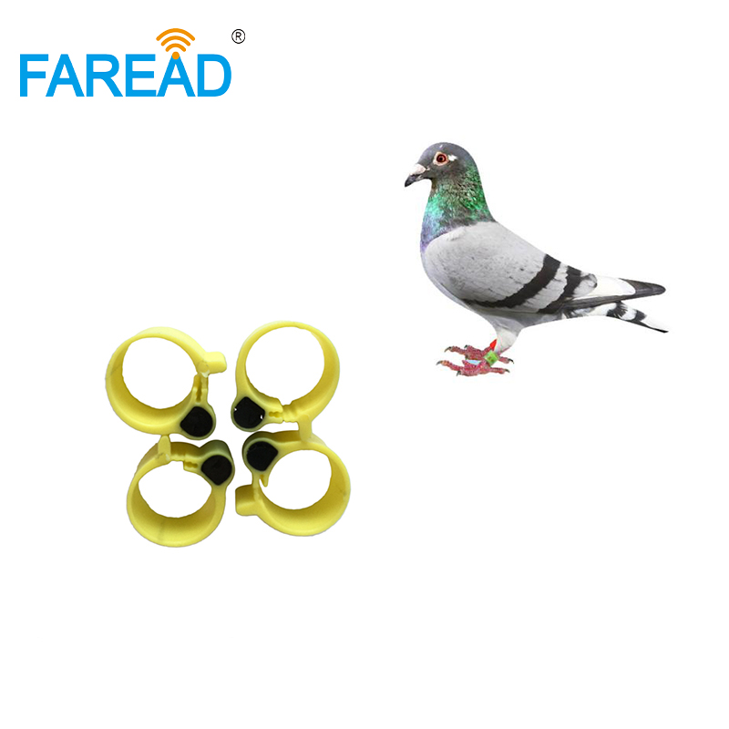 X100pcs RFID EMID Chip 125KHz  Foot  Tag Ring For Chicken Duck ID Tagging
